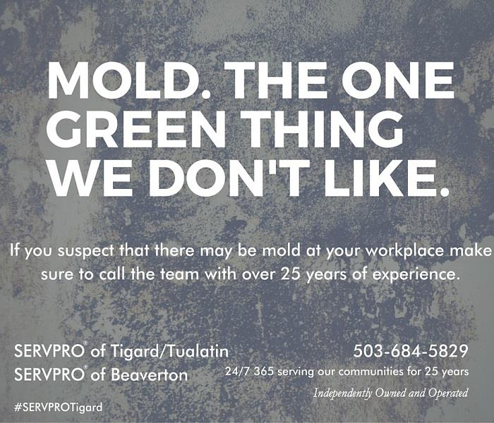 Mold in your business?