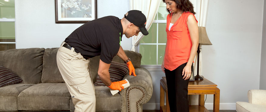 Beaverton, OR carpet upholstery cleaning